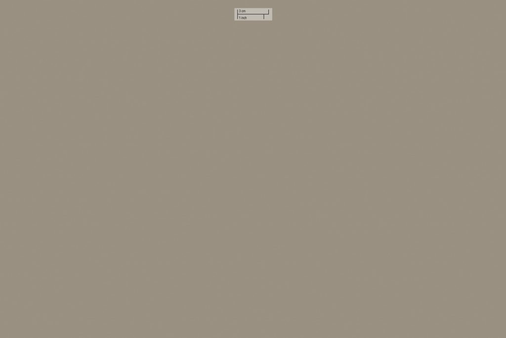 pure paper color argil 005 skin