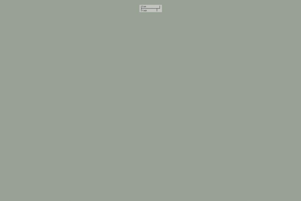 pure paper color vert de gris 019 skin